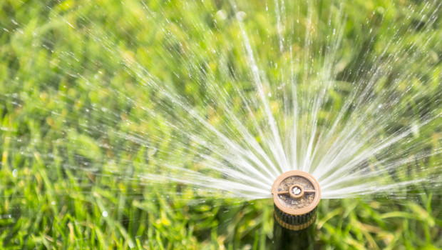 Wolfforth Reminds Residents of Summer Irrigation Schedule