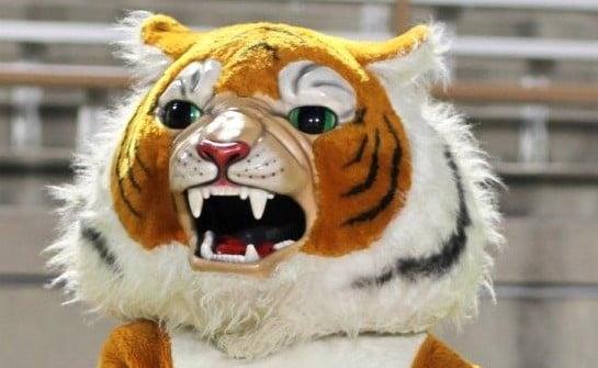 Mascot Mania Hits FISD