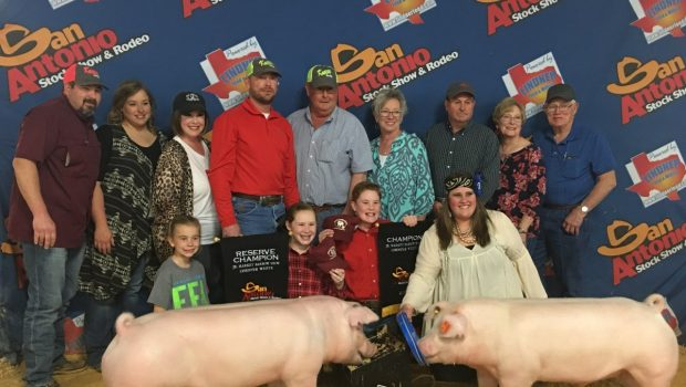 Crestview Siblings Win Top Two Awards at San Antonio Stock Show