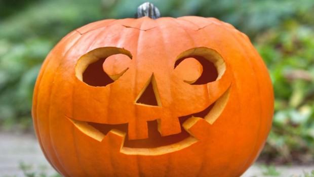 Pumpkin Decorating Across FISD