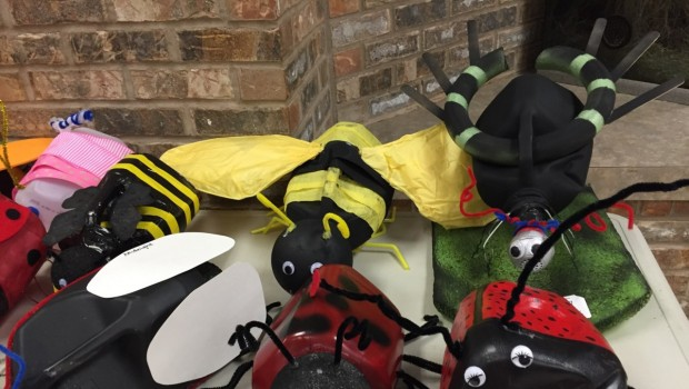 What's All The Buzz About At North Ridge?