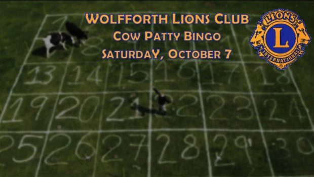It's Cow Patty Bingo Time!!