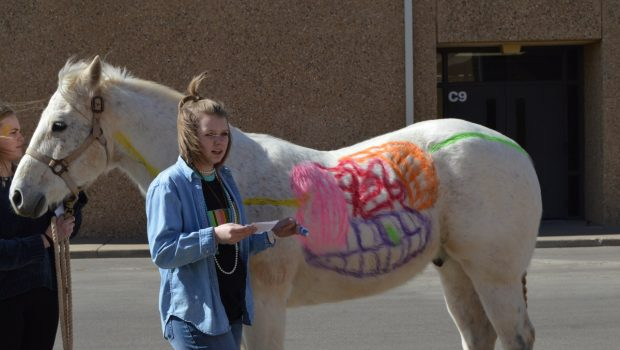 FHS Students Get Creative in Advanced Animal Science